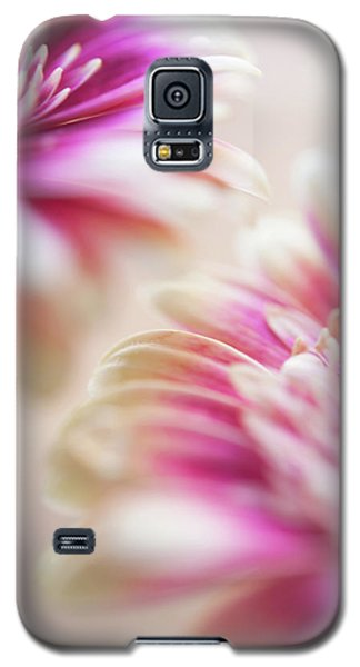 Galaxy S5 Case featuring the photograph Two Souls. Macro Gerbera by Jenny Rainbow