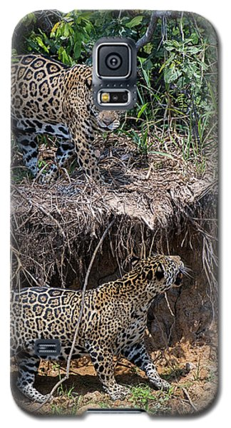 Galaxy S5 Case featuring the photograph Two To Tango by Wade Aiken