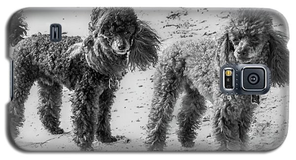 Two Toys B/w Galaxy S5 Case
