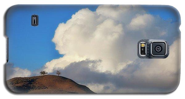 Two Trees At Ventura, California Galaxy S5 Case