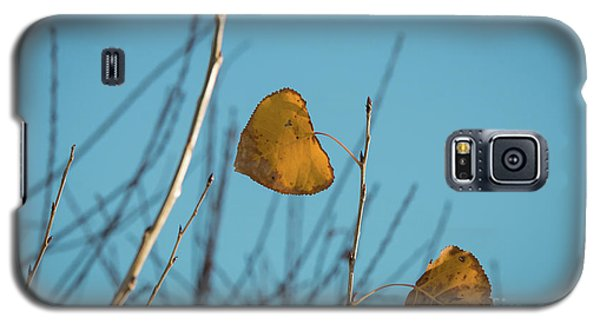 Galaxy S5 Case featuring the photograph Two Warriors  by Ana V Ramirez