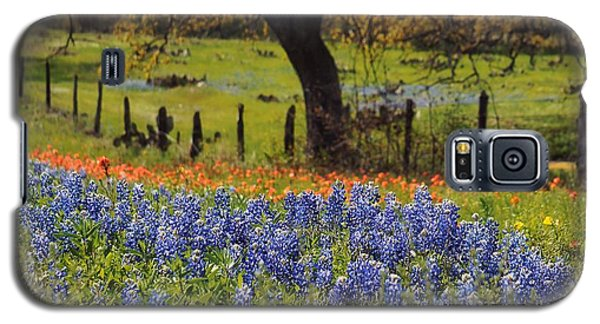 Tx Tradition, Bluebonnets Galaxy S5 Case by Lisa Spencer
