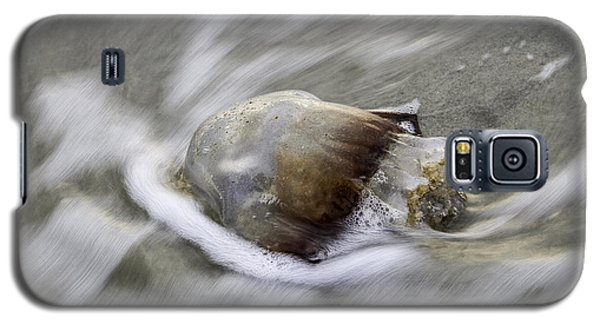 Tybee Isalnd Jellyfish Galaxy S5 Case by Elizabeth Eldridge