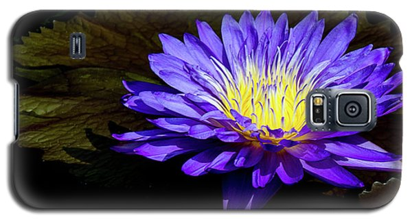 Galaxy S5 Case featuring the photograph Ultra Violet Tropical Waterlily by Julie Palencia