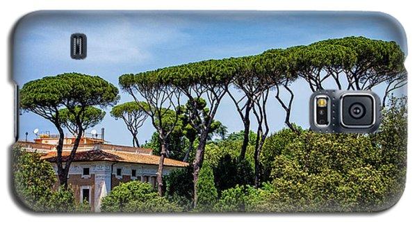 Umbrella Trees In Rome Galaxy S5 Case