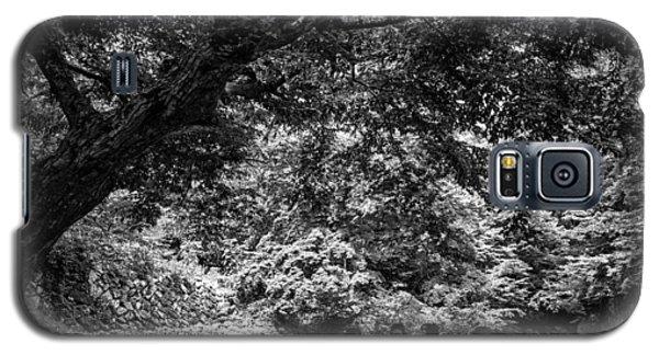 Under A Tree Galaxy S5 Case