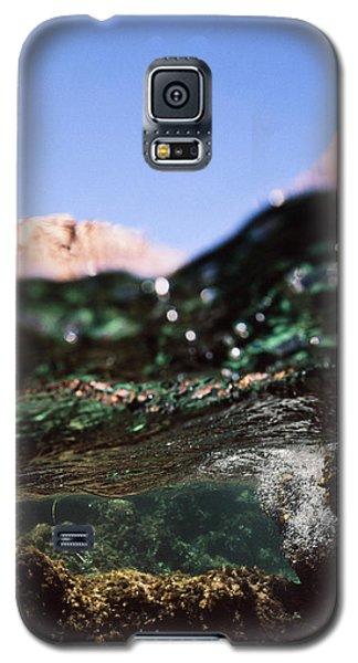 Under Rocks Galaxy S5 Case