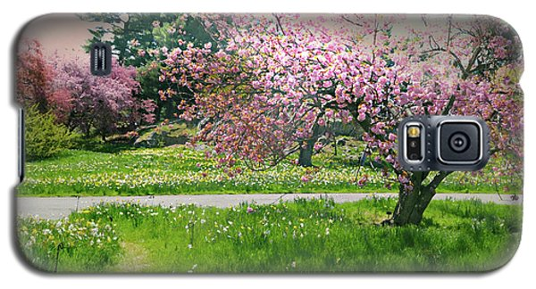 Galaxy S5 Case featuring the photograph Under The Cherry Tree by Diana Angstadt