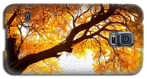Under The Yellow Tree Galaxy S5 Case