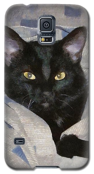 Undercover Kitten Galaxy S5 Case