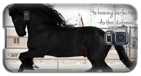 Understand The Soul Of A Horse Galaxy S5 Case
