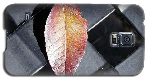 Understated Elegance Galaxy S5 Case