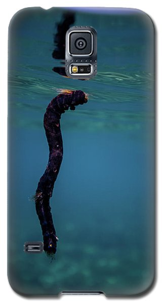 Underwater Branch Galaxy S5 Case