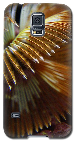 Underwater Feathers Galaxy S5 Case