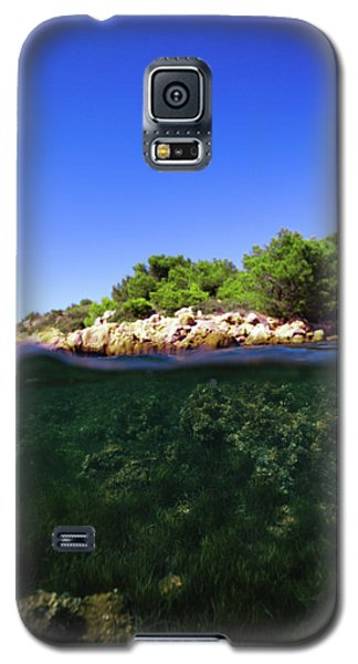 Underwater Life Galaxy S5 Case