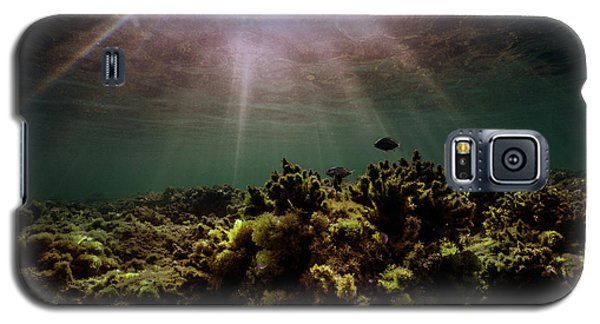 Underwater Sunset Galaxy S5 Case