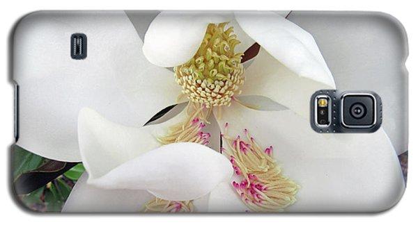 Unfolding Beauty Of Magnolia Galaxy S5 Case