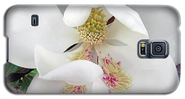 Unfolding Beauty Of Magnolia Galaxy S5 Case