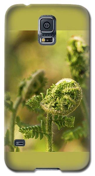Unfurl Galaxy S5 Case