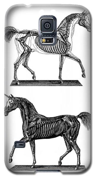 White Horse Galaxy S5 Case - Unicorn Anatomy by Madame Memento