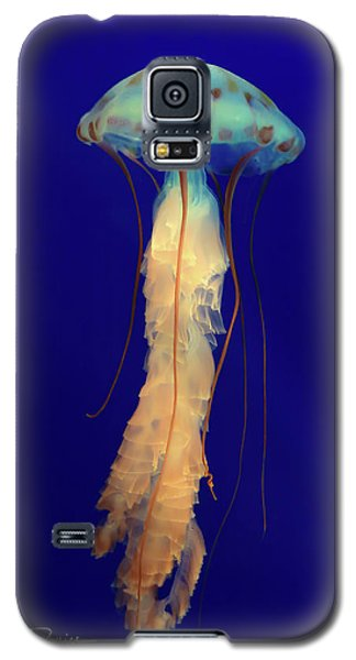 Unidentified Floating Obejct Galaxy S5 Case
