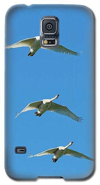 Unison Galaxy S5 Case