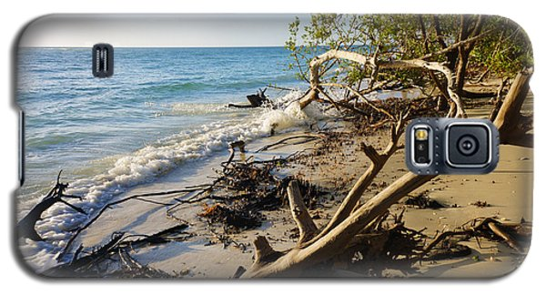 The Unspoiled Beaty Of Barefoot Beach Preserve In Naples, Fl Galaxy S5 Case