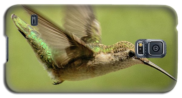 Untitled Hum_bird_one Galaxy S5 Case