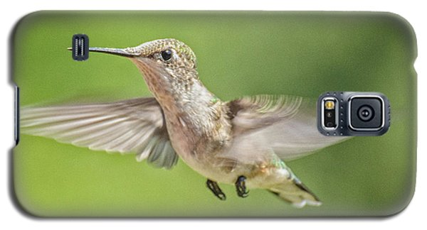 Untitled Hum_bird_three Galaxy S5 Case