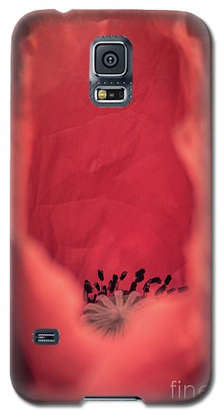 Galaxy S5 Case featuring the photograph Untouched by Hannes Cmarits
