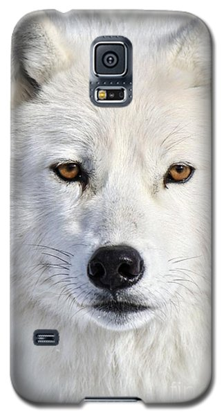 Galaxy S5 Case featuring the photograph Up Close And Personal by Heather King