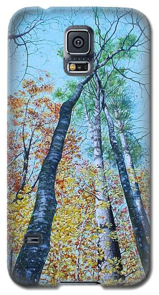 Up Into The Trees Galaxy S5 Case by Mike Ivey