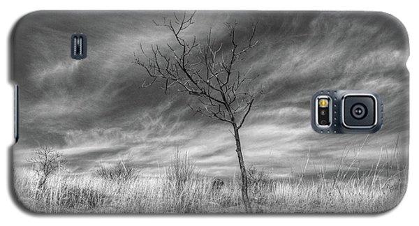 Up On Kittatinny Ridge Galaxy S5 Case