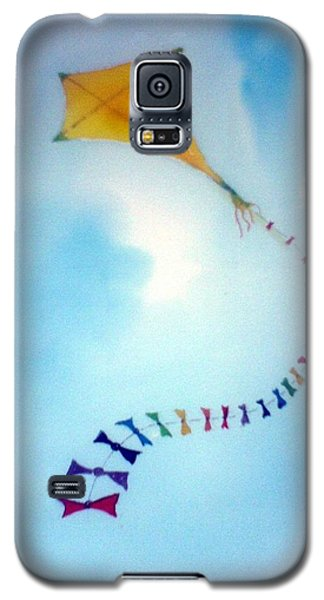 Up Up And Awaaay Galaxy S5 Case