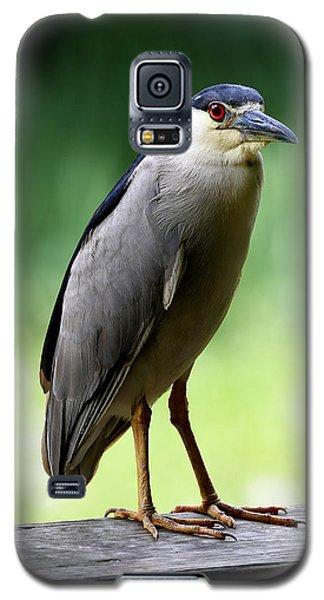 Upstanding Heron Galaxy S5 Case