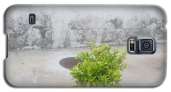 Professional Galaxy S5 Case - Urban Landscape by Anamarija Marinovic