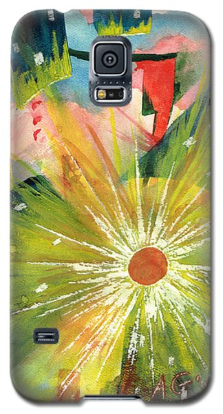 Urban Sunburst Galaxy S5 Case