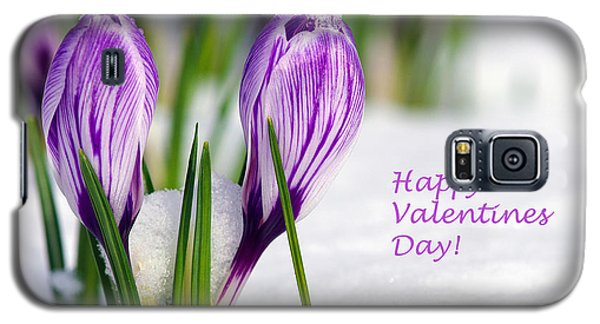 Valentines Day Crocuses Galaxy S5 Case