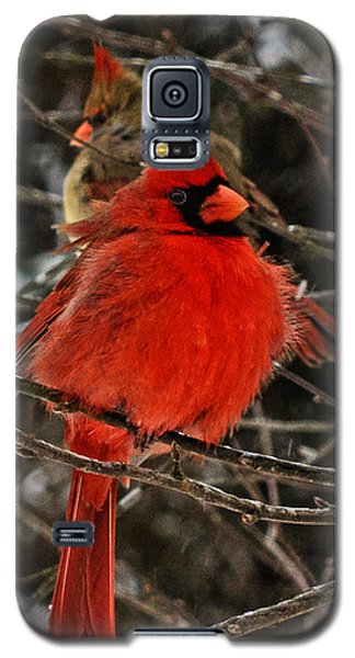 Galaxy S5 Case featuring the photograph Valentines by John Harding