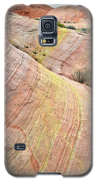 Galaxy S5 Case featuring the photograph Valley Of Fire Pastel Dunes by Ray Mathis