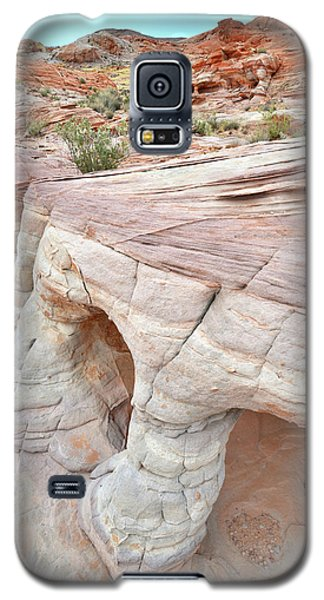 Galaxy S5 Case featuring the photograph Valley Of Fire's Wash 3 by Ray Mathis