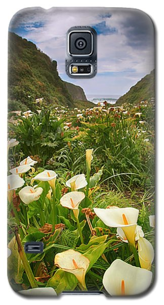 Valley Of The Lilies Galaxy S5 Case