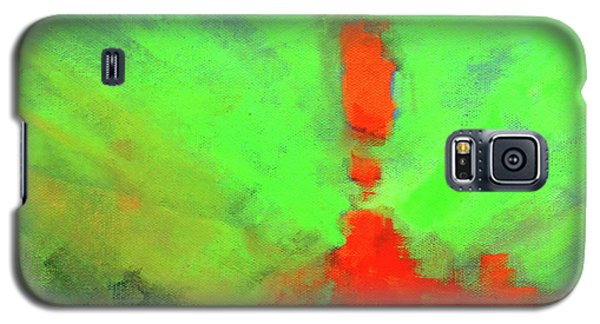 Valley View Galaxy S5 Case by Nancy Merkle