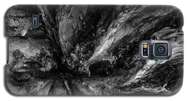 Valleys Galaxy S5 Case