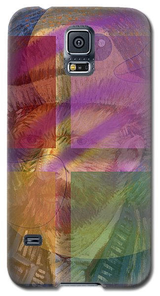Van Gogh Self Portrait With Felt Hat Galaxy S5 Case