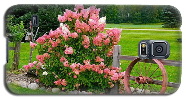 Vanilla Strawberry Hydrangea Galaxy S5 Case by Randy Rosenberger