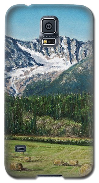 Galaxy S5 Case featuring the painting Vanishing Glacier by Stanza Widen