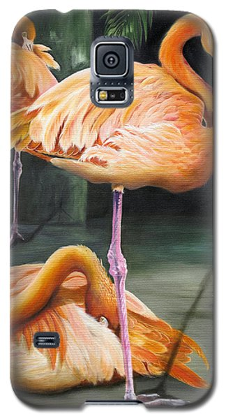 Galaxy S5 Case featuring the painting Vanity by Phyllis Beiser
