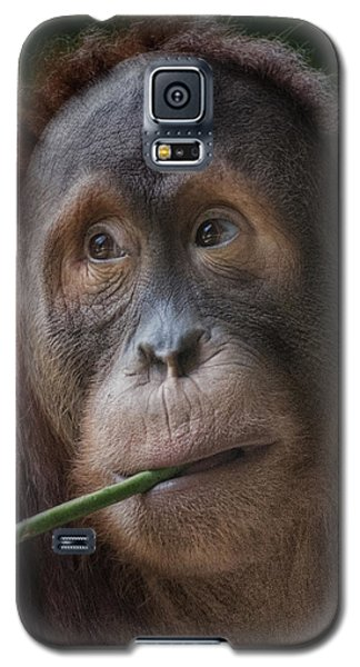Vegetarian Galaxy S5 Case by CR  Courson