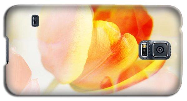 Veiled Tulip Galaxy S5 Case